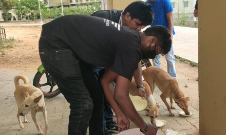 Amidst Covid Lockdown, Students initiate feeding of Wild Animals and Stray Dogs
