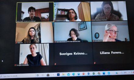 Dr Sheela Suryanarayanan Speaks at Swedish Parliament Event